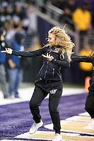 19 November 2016:  Washington cheerleader Becca Love entertained fans at the University of Washington in Seattle, WA.