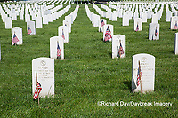 65095-01704 Flags on Memorial Day at Jefferson Barracks National Cemetery, St Louis, MO