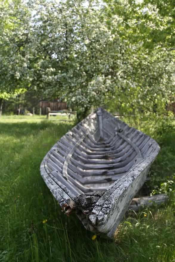 Aging wooden bateau boat at Leonard's Mills Bradley ME