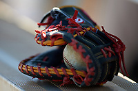 Illinois State Redbirds glove and baseball sits on the dugout bench during a game against the Indiana Hoosiers on March 4, 2016 at North Charlotte Regional Park in Port Charlotte, Florida.  Indiana defeated Illinois State 14-1.  (Mike Janes/Four Seam Images)