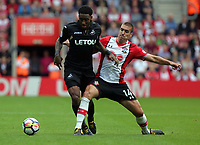 (L-R) Leroy Fer of Swansea City challenged by Oriol Romeu of Southampton during the Premier League match between Southampton and Swansea City at the St Mary's Stadium, Southampton, England, UK. Saturday 12 August 2017
