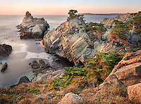 Point Lobos, Big Sur