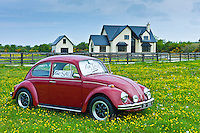 VW Beetle car for sale outside Irish home near Taghmon, Southern Ireland
