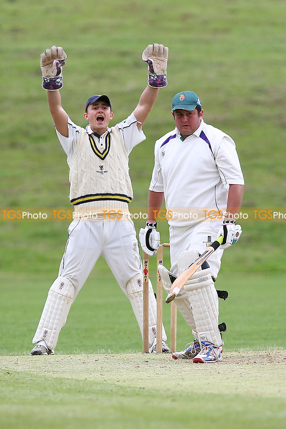 A big appeal for the wicket of Harlow batsman L Heskett - Ardleigh Green CC vs Harlow CC - Essex Cricket League - 22/06/13 - MANDATORY CREDIT: Gavin Ellis/TGSPHOTO - Self billing applies where appropriate - 0845 094 6026 - contact@tgsphoto.co.uk - NO UNPAID USE