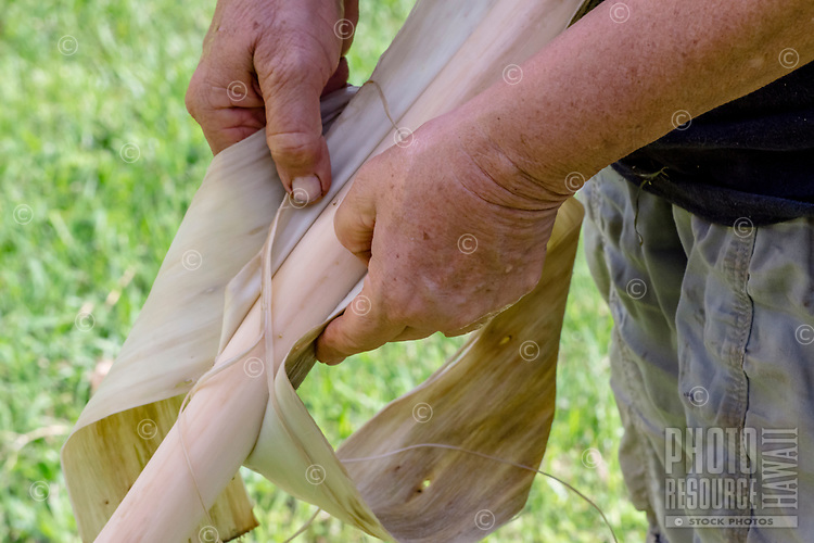 Kapa making on the Big Island: A kapa maker removes the inner bark of a stalk of wauke (paper mulberry).
