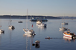 kayaker, Puget Sound, boats at anchor, Port Townsend, Wooden Boat Festival, sunrise, Salish Sea, Washington State, Pacific Northwest, United States,