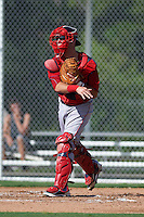 Boston Red Sox catcher Austin Rei (28) during an instructional league game against the Minnesota Twins on September 26, 2015 at CenturyLink Sports Complex in Fort Myers, Florida.  (Mike Janes/Four Seam Images)