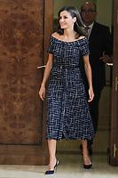 JUL 16 Queen letizia attends Royal audiences at Zarzuela Palace