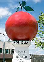 Welcome to Cornelia home of the big red apple in Georgia