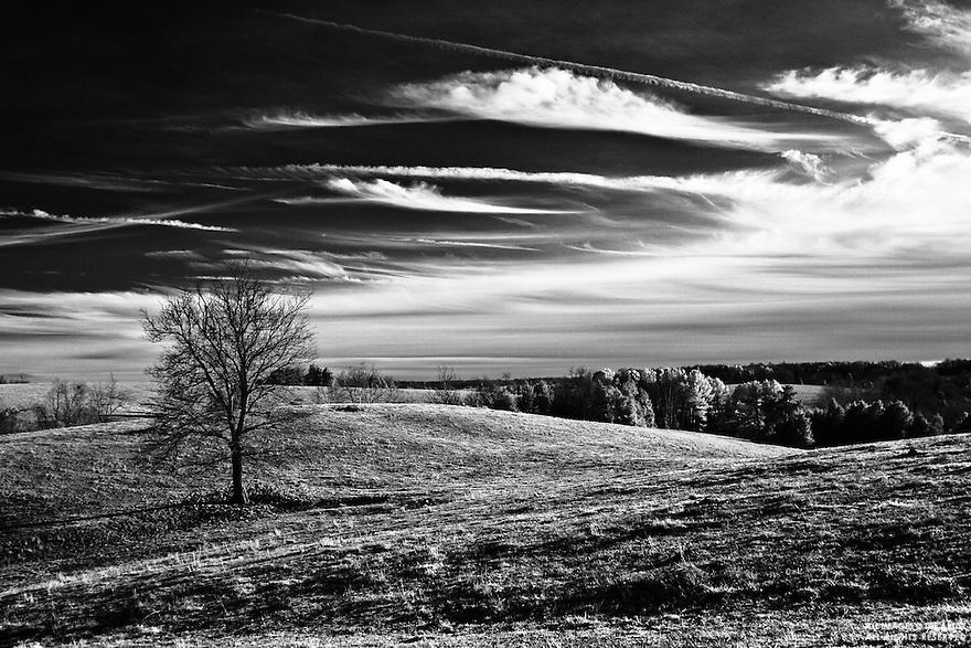 Date:  January/23/10, digital infrared, landscape
