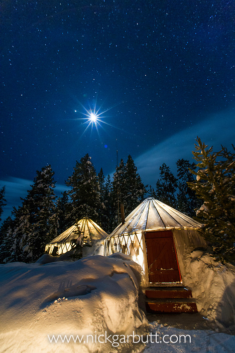 Yellowstone Expeditions Yurt Camp by star and moonlight. Near Canyon, Yellowstone National Park, Wyoming, USA.