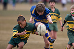 Patumahoe vs Pukekohe. Counties Manukau Junior Rugby finals day held at Bruce Pulman Park Papakura on Saturday August 30th 2008.