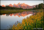 Teton Reflection, Sunrise<br /> Grand Teton National Park, Wyoming