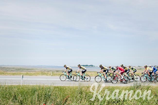 Team LottoNL-Jumbo pacing the peloton to control the race for teammates Primoz Roglic (GC leader) &amp; Dylan Groenewegen (sprinter)<br /> <br /> Ster ZLM Tour (2.1)<br /> Stage 2: Tholen &gt; Hoogerheide (186.8km)