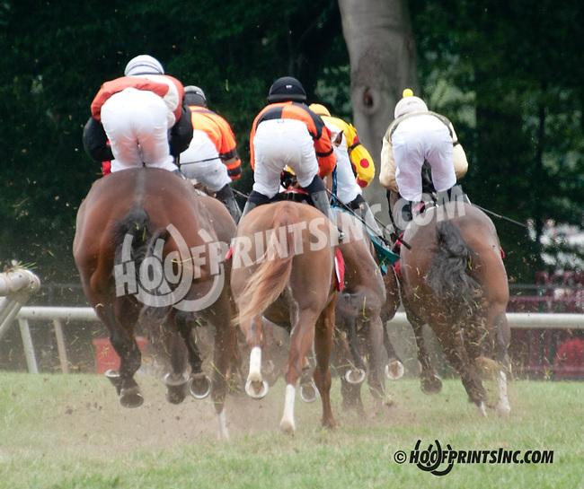 Swoop winning at Delaware Park on 8/10/13
