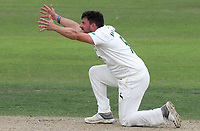 Nottinghamshire captain Steven Mullaney begs for a wicket during Nottinghamshire CCC vs Essex CCC, Specsavers County Championship Division 1 Cricket at Trent Bridge on 10th September 2018