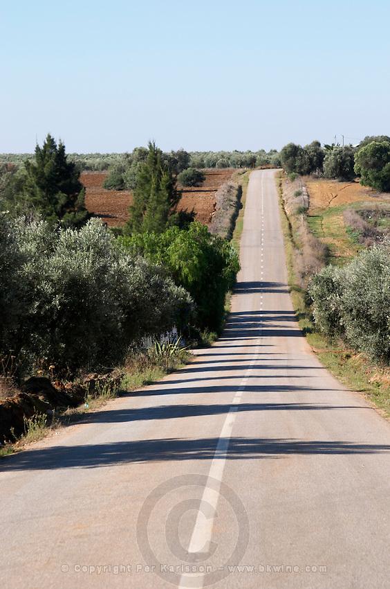 a straight road herdade do peso alentejo portugal