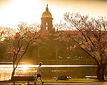 4.24.16 Spring Scenic 02.JPG by Matt Cashore/University of Notre Dame