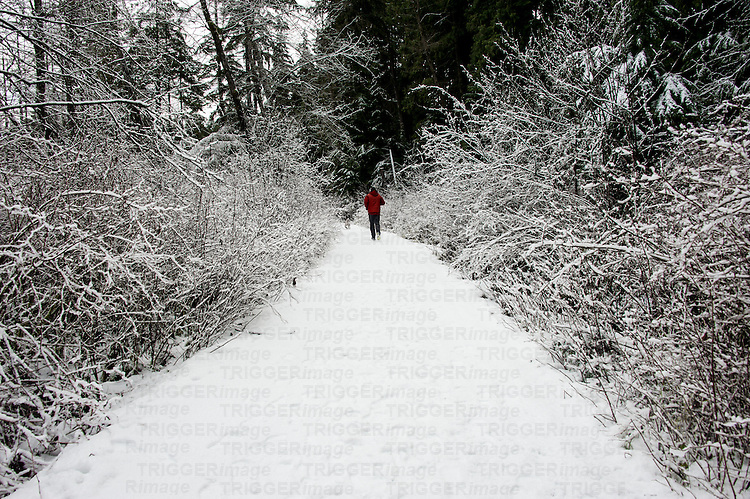 A distant figure walking along a rural path in winter time with snow