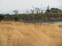 Dry grass with a distant temple in the background