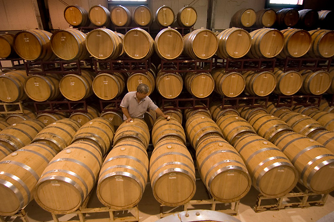Barrel ageing room at Becker Vineyards in Hill Country near Stonewall, Texas
