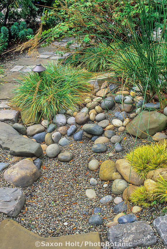 Rain garden. Rock basin to collect rain water to percolate in garden.