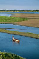 Paddling voyageurs type canoe on Missouri River near Washburn, North Dakota,.AGPix_0226.