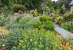 Indianola, WA: Colorful summer perennial garden