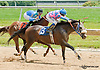 Raybern's Gold winning at Delaware Park on 6/27/13