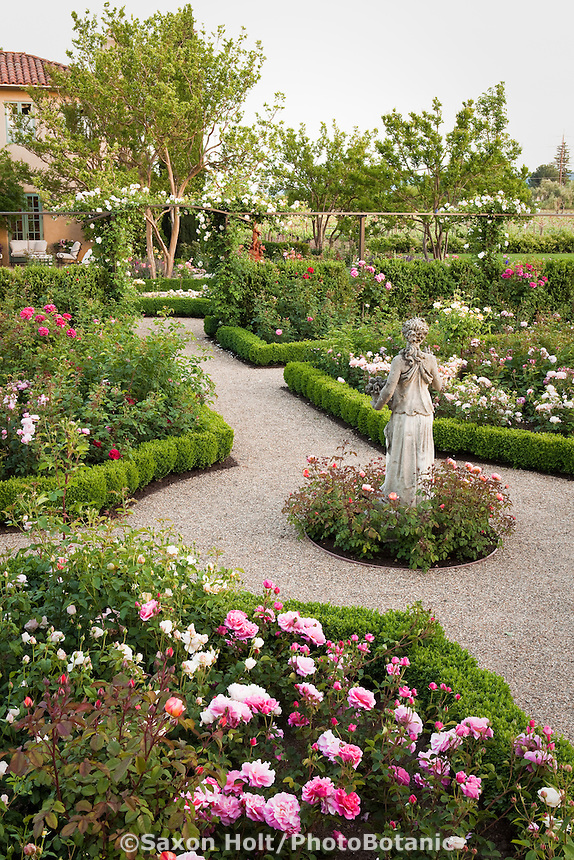 Gravel path through California flower garden with statue as focal point in formal garden room of English (Austin) roses with pink Rosa 'Lillian Austin'