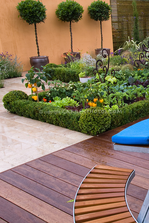 Edible landscaping: Vegetable Garden with deck, garden furniture, table, bench, peppers, wall, backyard, growing food at home, privacy wall, standard bay laurel herb trees in container pots, rwood decking, patio, flowers and vegetables in formal borders