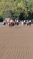 Scenes from around the track on August 30, 2012 at Saratoga Race Track in Saratoga Springs, New York.  (Bob Mayberger/Eclipse Sportswire)