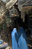 AFGHANISTAN, 06.2008, Kabul. Vogelverkauf auf dem Mandawi-Markt.   Bird sale at the Mandawi market.<br /> © Marzena Hmielewicz/EST&OST
