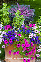 63821-22705 Container with petunias, dianthus, and lobelia,  Cantigny Park at Wheaton  IL
