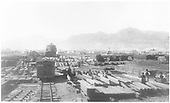 Extensive timber material yard.  Bridge timbers and small truss assemblies.  Many workers.  Twin spout water tank.<br /> D&amp;RG  Canon City, CO  early 1880