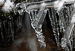 Icicles form on branches in a small creek in the Crystal Springs Campground near Woodfords, Ca., on Tuesday, Dec. 21, 2010..Photo by Cathleen Allison