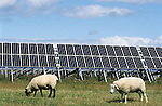 GERMANY Eon Solar Park at North sea island Pellworm / Deutschland Pellworm, Solar Kraftwerk der Eon AG
