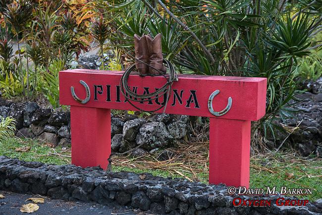 Palapala Ho'Omau Congregational Church Grave Yard