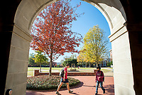 Gingko trees and fall foliage, seen through McCain Hall door archway.<br />
