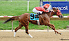 Where's Alayna winning at Delaware Park on 9/24/14