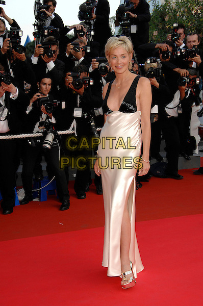 "SHARON STONE.""Chacun Son Cinema"" arrivals.60th International Cannes Film Festival.Cannes, France   May 2007.full length long cream and black dress silk satin gold platform shoes .CAP/PL.©Phil Loftus/Capital Pictures"