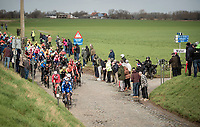 peloton hitting the Holle Weg cobbles<br /> <br /> 72nd Kuurne-Brussel-Kuurne 2020 (1.Pro)<br /> Kuurne to Kuurne (BEL): 201km<br /> <br /> ©kramon
