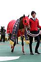 Horse Racing : Chukyo 2R at Chukyo Racecourse