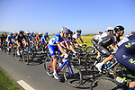 The peloton in action near Noyon during the 115th edition of the Paris-Roubaix 2017 race running 257km Compiegne to Roubaix, France. 9th April 2017.<br /> Picture: Eoin Clarke | Cyclefile<br /> <br /> <br /> All photos usage must carry mandatory copyright credit (&copy; Cyclefile | Eoin Clarke)