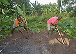 Hilaire Valismond (left) and Jean Baptiste Raymond plant banana trees on the Haitian island of La Gonave where Service Chrétien d'Haïti is working with survivors of Hurricane Matthew, which struck the region in 2016. SCH, a member of the ACT Alliance, supports agriculture on the island by providing tools, seeds, and technical support and training for farmers.