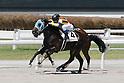 Horse Racing : Kokura Races