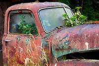 Old truck in field near Sequim, Washington.