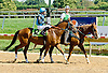 Unconditional Resq at Delaware Park on 9/12/12