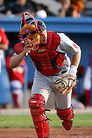 July 10th 2008:  Catcher Tim Federowicz of the Lowell Spinners, Class-A affiliate of the Boston Red Sox, during a game at Dwyer Stadium in Batavia, NY.  Photo by:  Mike Janes/Four Seam Images