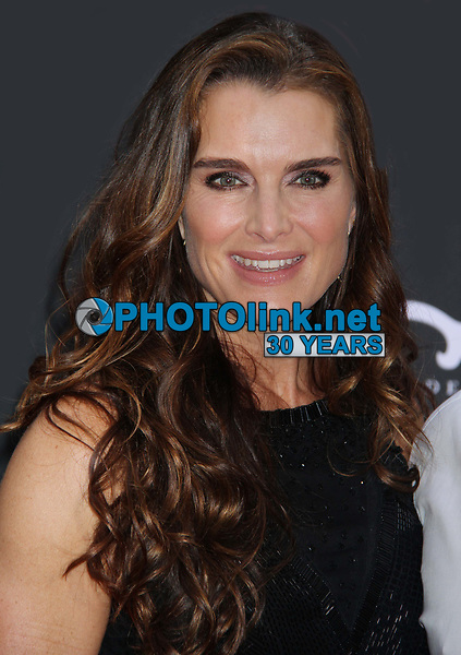 Brooke Shields 2013<br /> The Heat premiere<br /> Photo By John Barrett/PHOTOlink